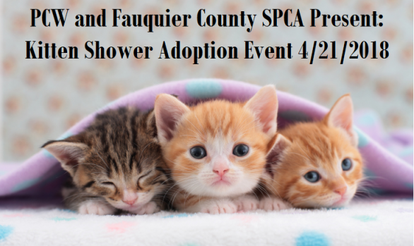 Saturday, April 21st: Kitten Shower with Fauquier SPCA