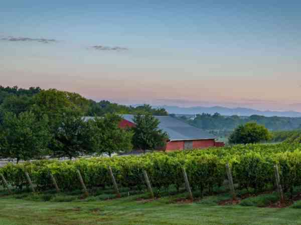 Strother Family Vineyards in Delaplane, Virginia