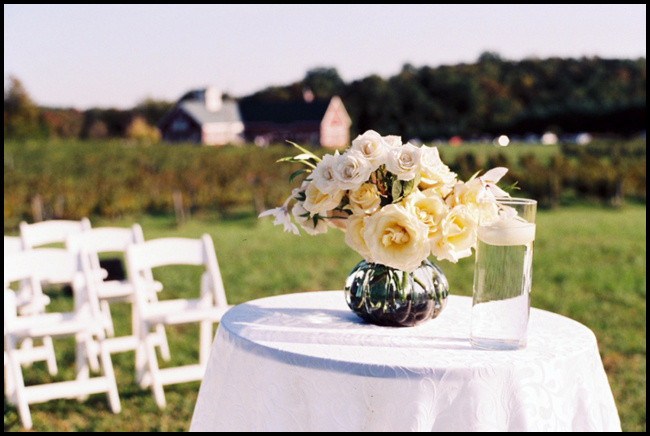 Philip Carter Winery, Weddings in Virginia, Photography by Jason Keefer